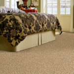 Port Coquitlam Carpet Options